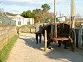 Alfarela de Jales, 5450, Portugal - panoramio - Belarmino Ribeiro (11).jpg