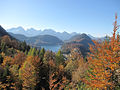 Alpsee from Neuschwanstein (5287380836).jpg