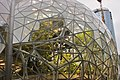 Amazon Spheres close-up (28364849979).jpg