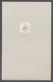 Ammonites spec. - - Print - Iconographia Zoologica - Special Collections University of Amsterdam - UBAINV0274 091 01 0020.tif