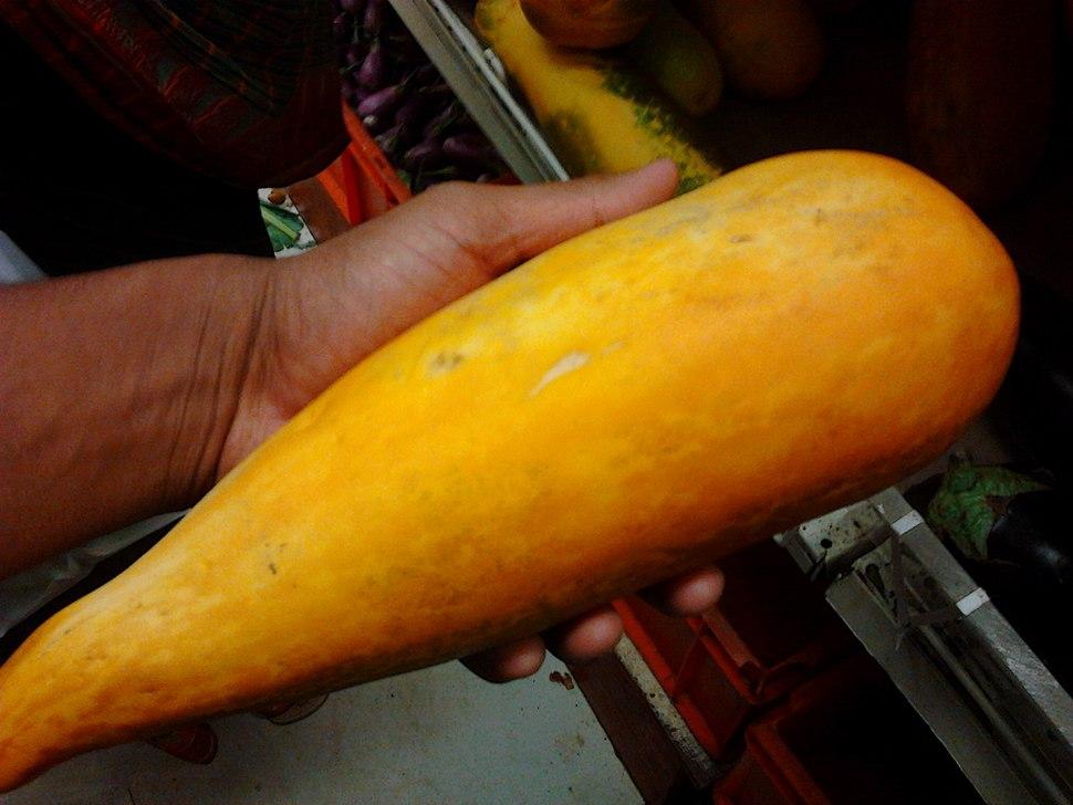 An Indian yellow cucumber