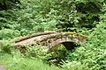 An ornamental footbridge at Cragside - geograph.org.uk - 1387570.jpg