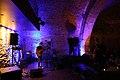 Ana Curcin - Waves Vienna 2014 e.jpg