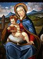 Andrea previtali, madonna col bambino tra i ss. domenico e marta (Banca popolare di BG) 03.JPG