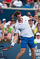 Andy Murray 2010 Forehand (4).jpg