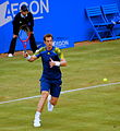 Andy Murray Queens 2013.jpg