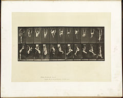 Animal locomotion. Plate 512 (Boston Public Library).jpg
