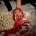 Animal sacrifice at Eid at Adha 5.jpg