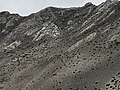 Annapurna Conservation Area, Jomsom, Mustang District, Nepal 42.jpg