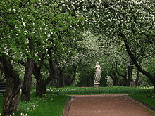 Apple orchards in Kolomenskoye 05.JPG