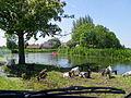 Around holland - Flickr - bertknot (70).jpg