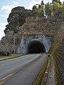 Atago tunnel, 愛宕トンネル - panoramio.jpg