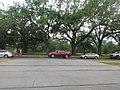 Audubon Park New Orleans 7 April 2020 - 18.jpg