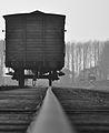 Auschwitz Train.jpg