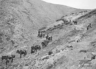 Capture of Jericho - Frank Hurley's photograph of the 1st Light Horse Brigade zig-zagging down a barren hillside