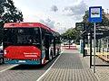 Autobus 7 ZKM Sochaczew.jpg