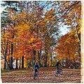 Autumn - not in New York - but in Zurich 01.jpg