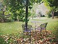 Autumn backyard in Kleinburg (15807322738).jpg