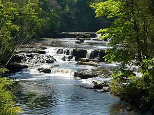 Aysgarth Falls - The Upper Falls seen from the bridge