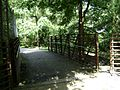 Azalea City Trail 52.jpg