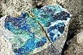 Azurite-malachite-tenorite in quartz monzonite (Continental Pit, Butte, Montana, USA) 1.jpg