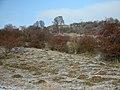 Bürgel 2004-01-03 03.jpg