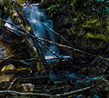 Backwoods waterfall (7221530192).jpg
