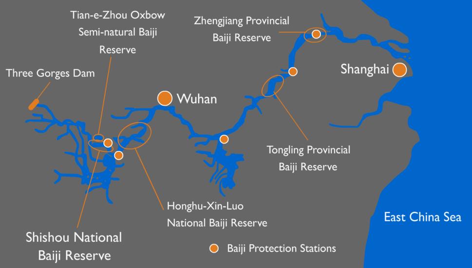Baiji conservation efforts map