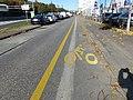 Bande cyclable, route des Jeunes, Genève.jpg