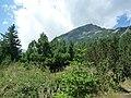Bansko, Bulgaria - panoramio (23).jpg