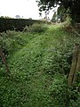 Barbed wire across footpath, Tintinhull - geograph.org.uk - 544013.jpg