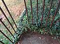 Bars of Lucy Townsend and Rev Charles Townsends grave in Thorpe Notts August 2015.jpg