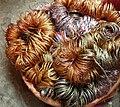 Basket full of bangles2.JPG