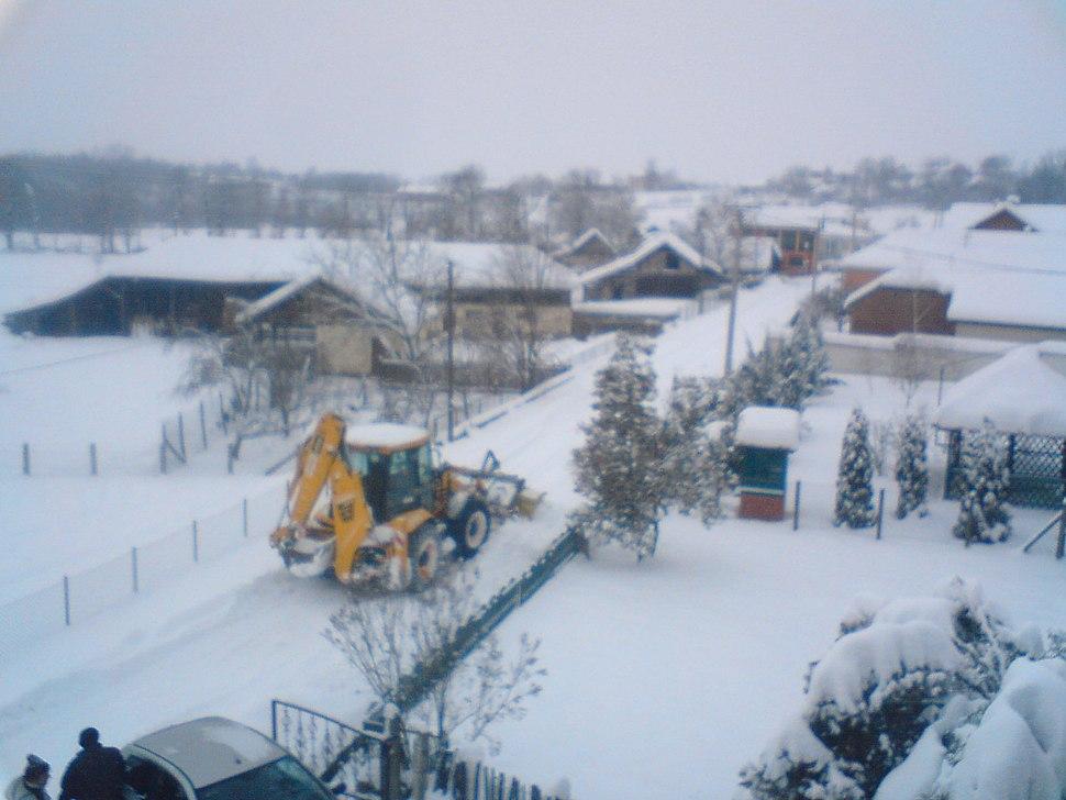 Batocina pod snegom