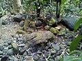Batu Yoni Depok, Kedung Banteng, Banyumas.jpg