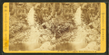 Beecher's Cascade, White Mountains, N.H, by Pease, N. W. (Nathan W.), 1836-1918.png
