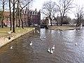 Begijnhof,Brugge - panoramio.jpg