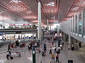 Beijing Capital International Airport Terminal 3 Security-check passage 20090818.jpg