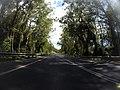 Benandarah NSW 2536, Australia - panoramio (43).jpg