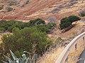 Betancuria, 35637, Las Palmas, Spain - panoramio (149).jpg