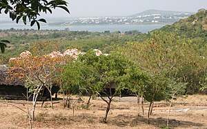 Bhopal - A view of upper lake, part of the city and the hilly Vindhya terrain.