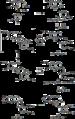 Biosynthesis of berberine.png