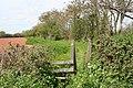 Bishops Lydeard, footpath near Portman Farm - geograph.org.uk - 163654.jpg