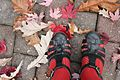 Black Fisherman Sandals with Orange Tights and Fall Leaves (22469401697).jpg