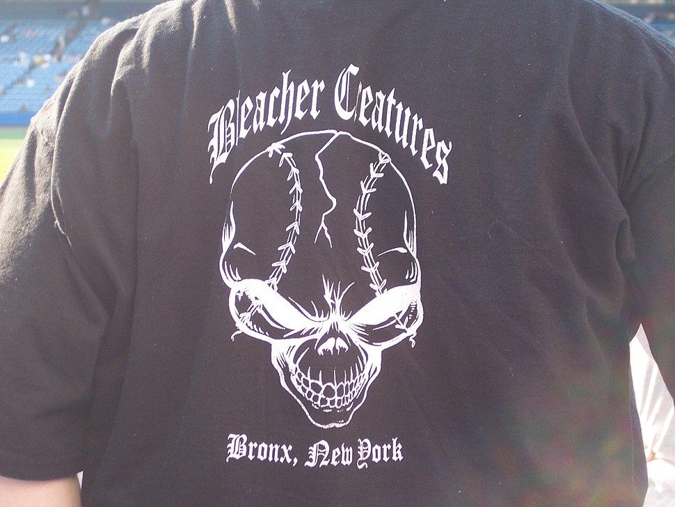 BleacherShirt