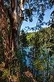 Bongil Bongil IMG 3993 - panoramio.jpg