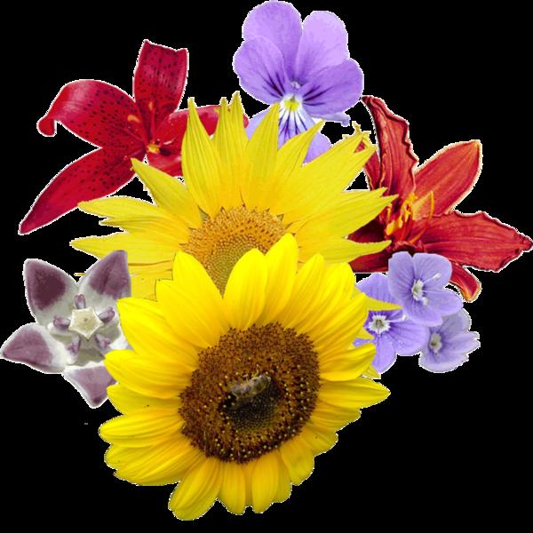 File:Bosje bloemen.png