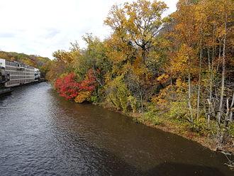 Alapocas Run State Park - Brandywine River and Alapocas Woods