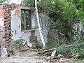 Brick wall, rubble, vegetation, factory ruins, České Budějovice.JPG
