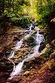 Bridal Veil Falls (42248631575).jpg